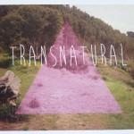 TransNatural Workshop